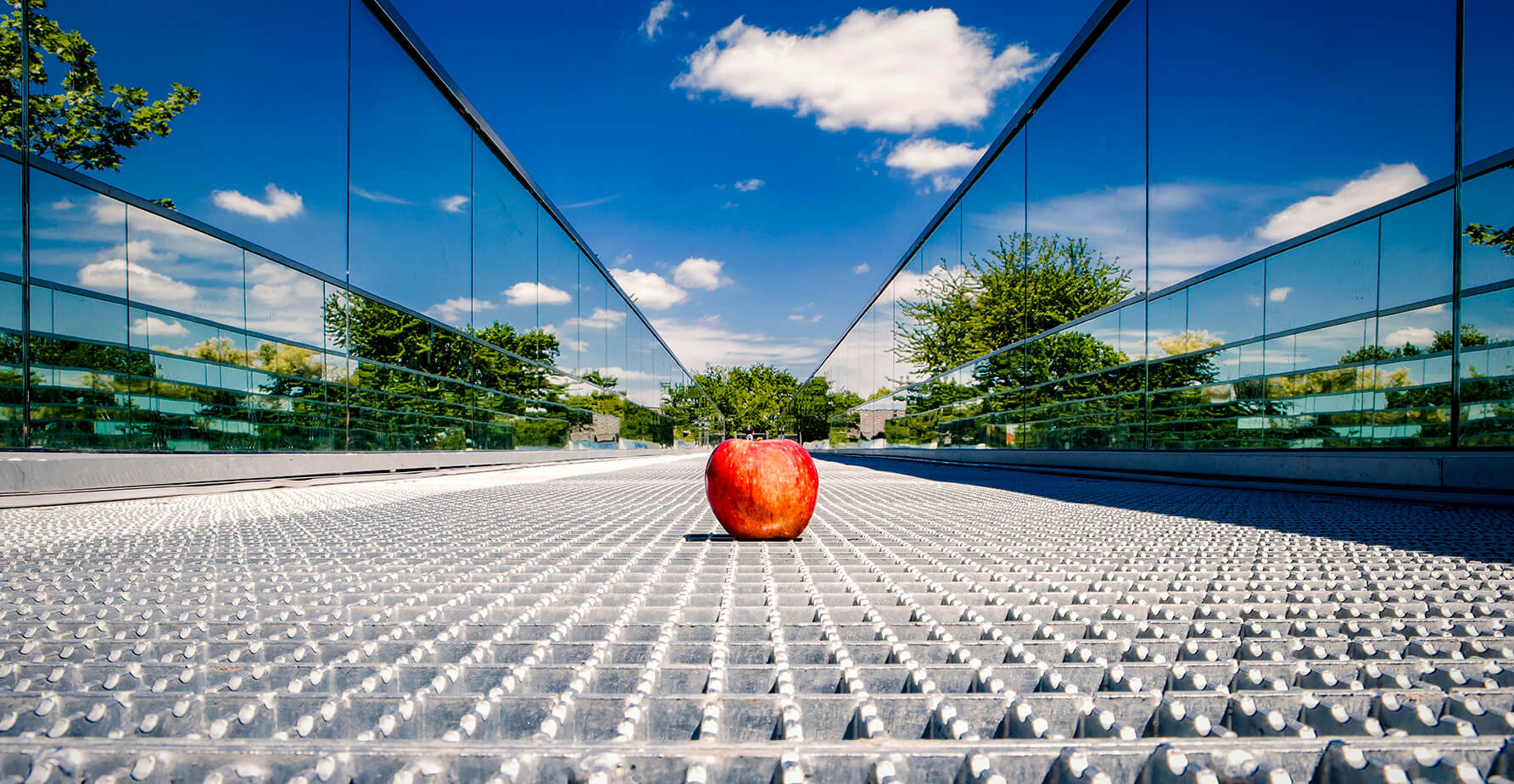 The Fantastic Apple