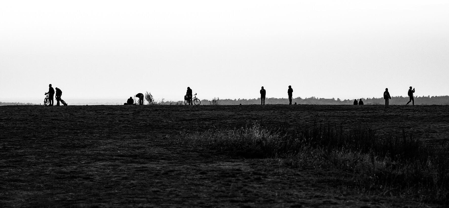 Life at the horizon line.jpg