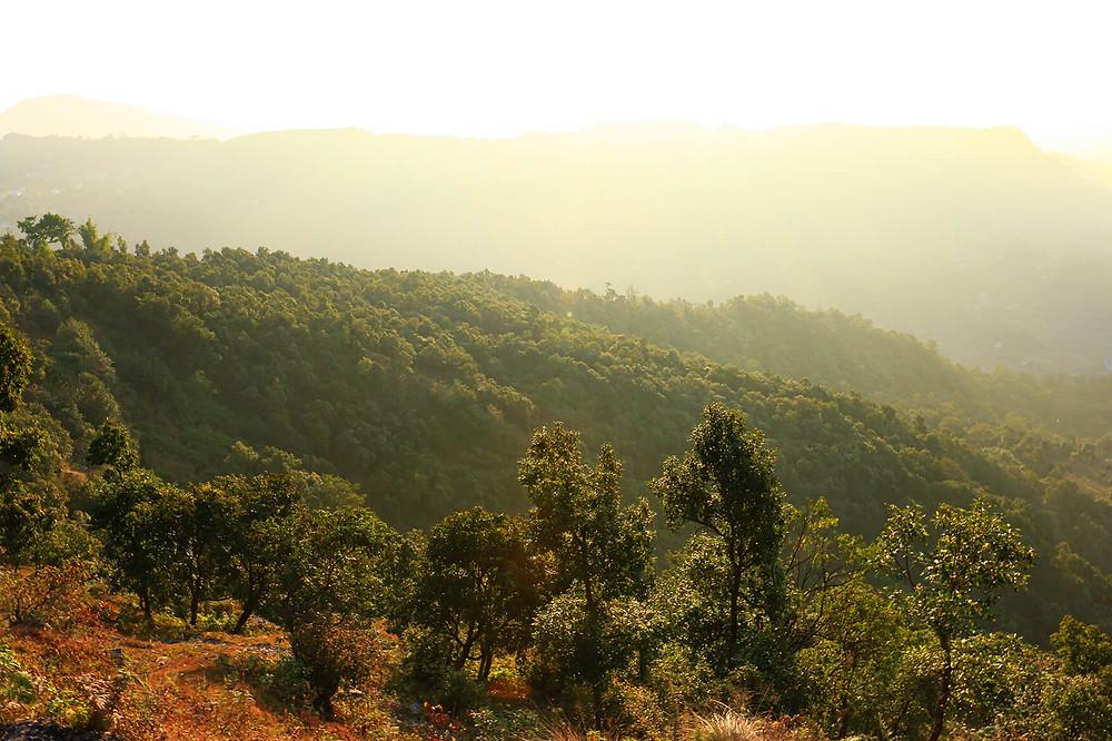 Way up to Mount Sarangkot