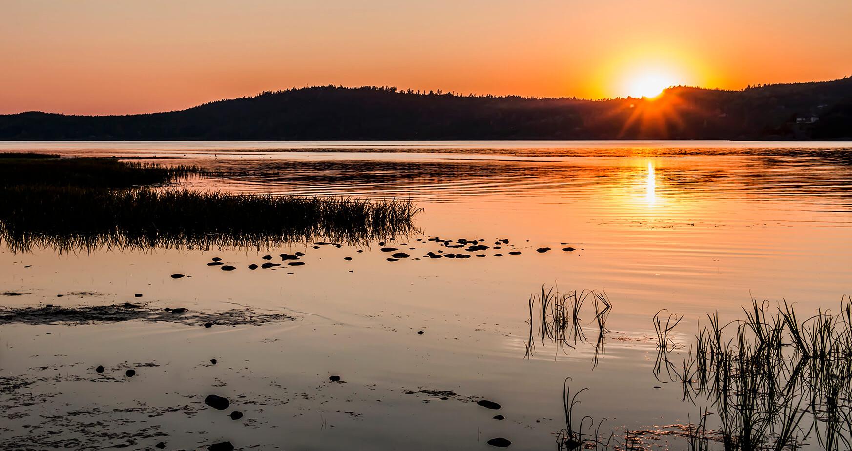 Sweden - Mjörn Lake