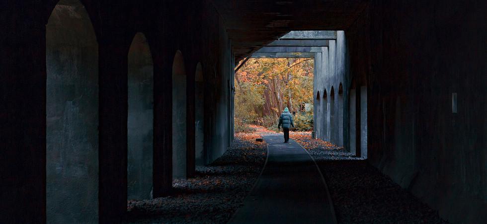 Autumn Tunnel.jpg