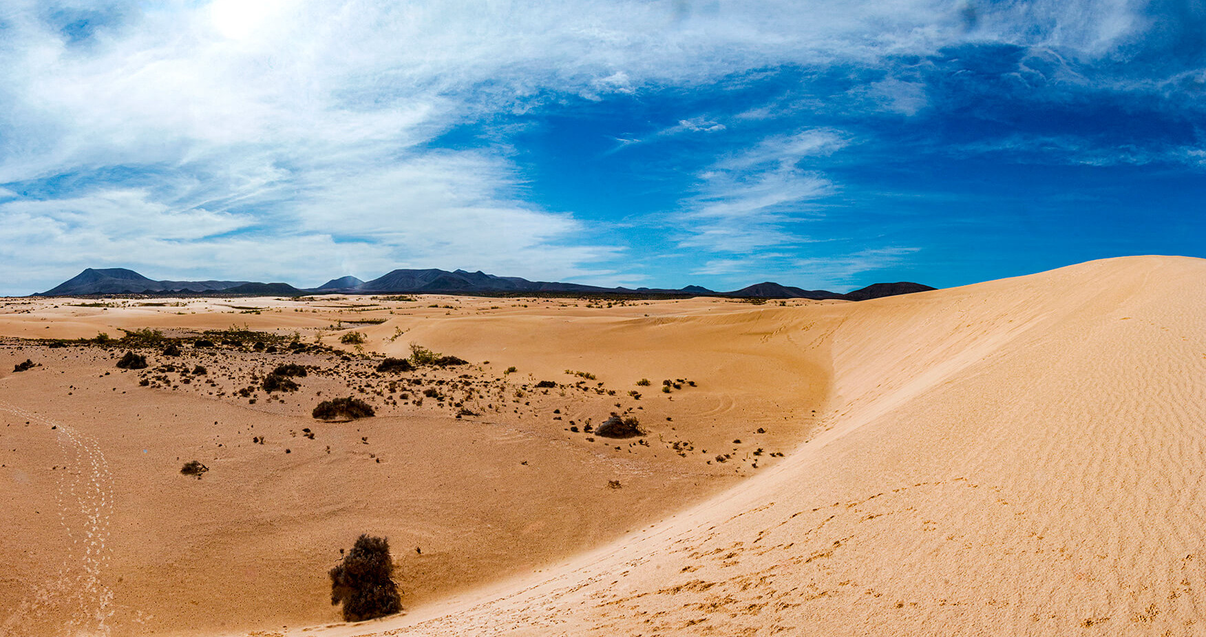 Spain - Fuerteventura Dunes