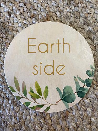 EARTH SIDE LEAF  | Wooden Plaque