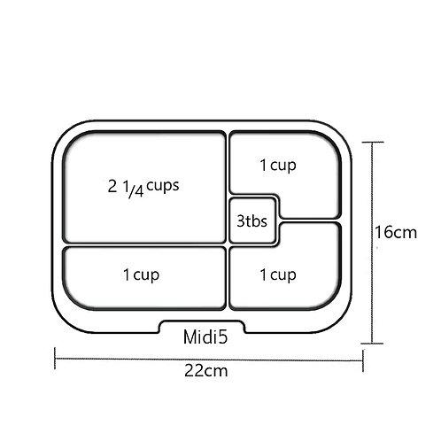 Trays | Midi 5 | Clear
