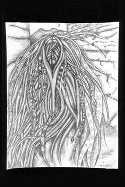 drawings 69