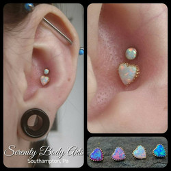 Double Conch