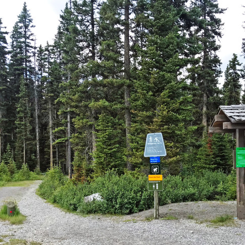 The trailhead can be found at Mount Shark Parking lot. Look for the message board, and you'll see the path into the trees beside it.  You'll have to take the Watridge Lake Trail to start your journey.