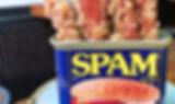 SPAM-FRIES.jpg