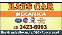 18 - bats car.jpg
