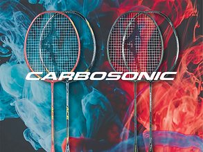 12. CARBOSONIC.png