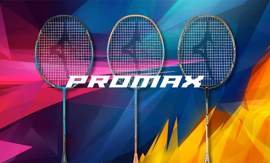 11. PROMAX.png
