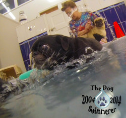 Fritz+splash+1.jpg
