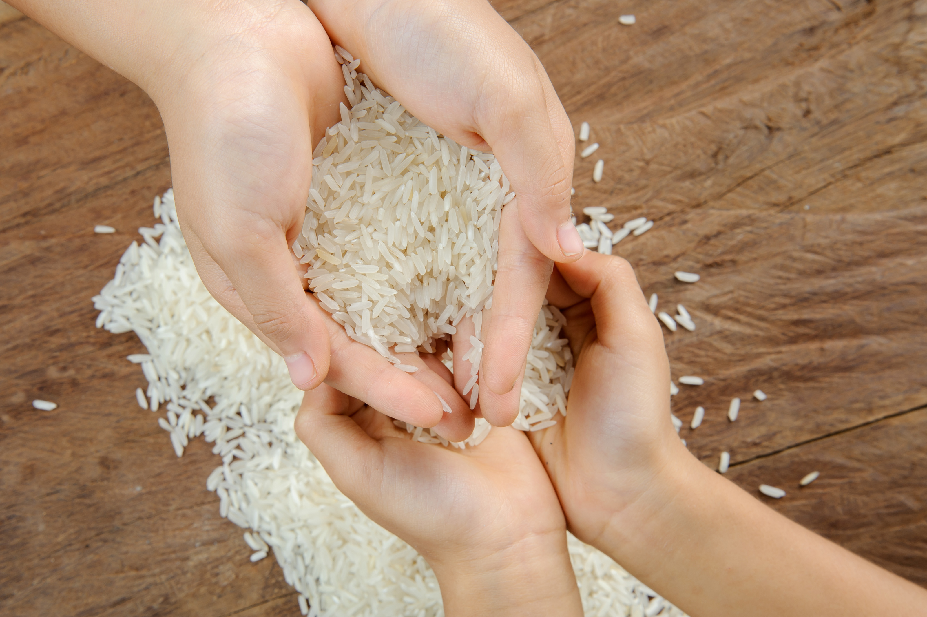 Rice Grain On Kid Hand