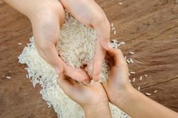 Rice Grain On Kid Hand