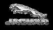 logo-jaguár.png