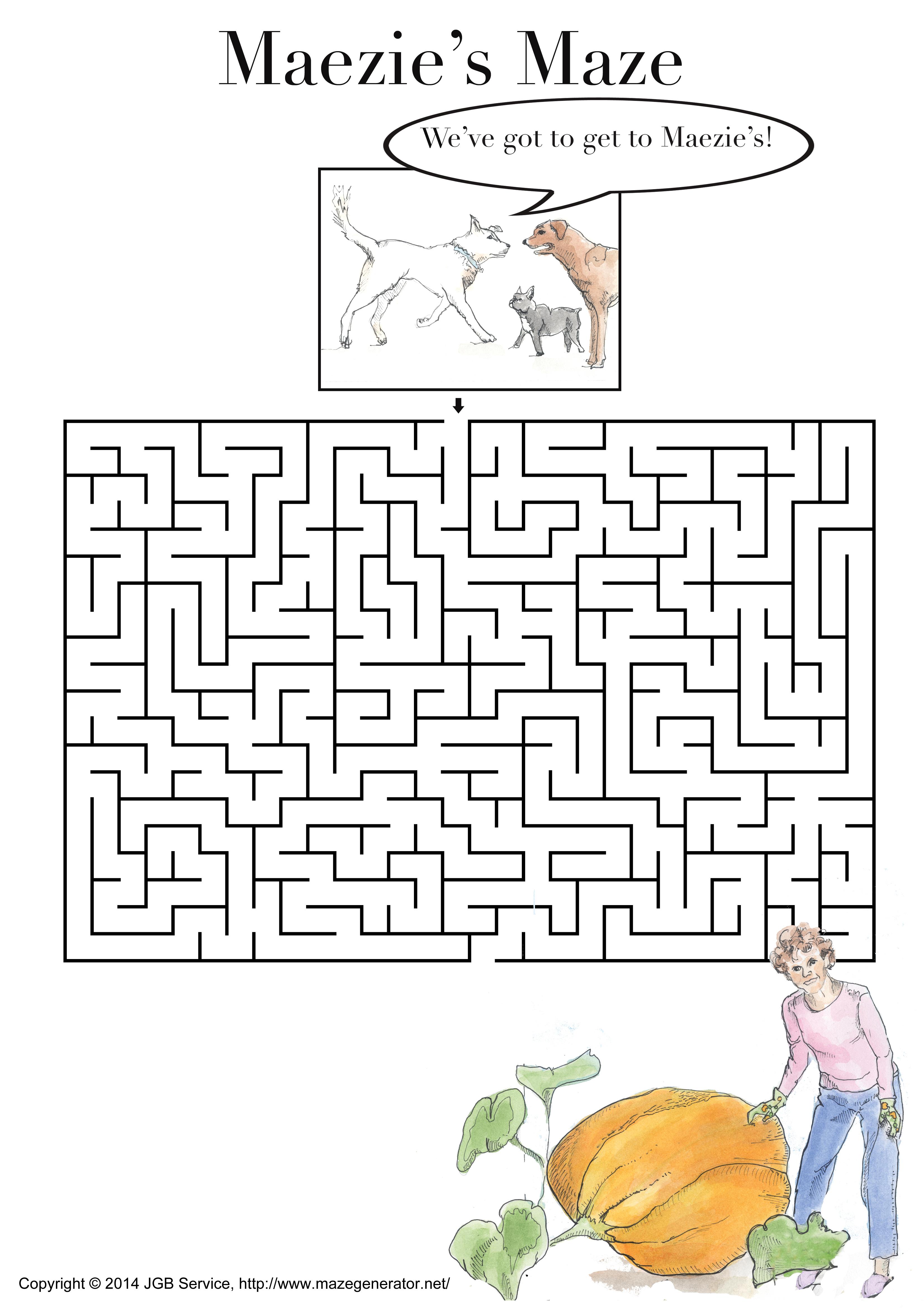 Maezie's Maze
