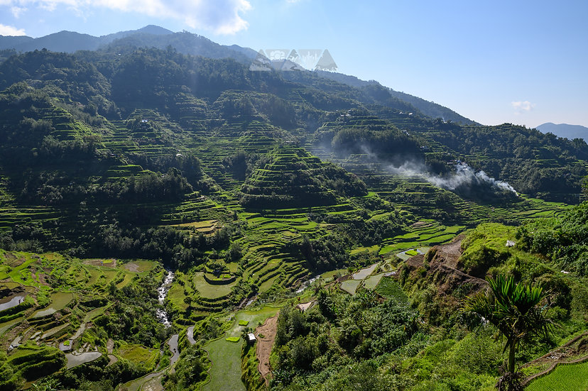 Terraces of Banaue