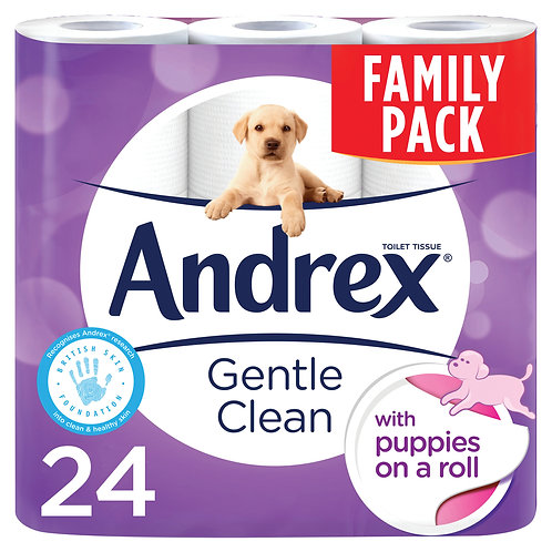 24 ANDREX TOILET ROLL - GENTLE CLEAN PURE WHITE