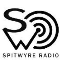 Spitwire logo.jpg