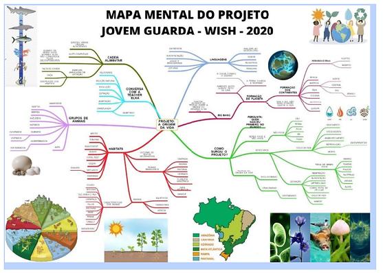 mapa mental jovem guarda.png