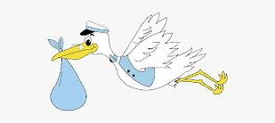 stork 3.png