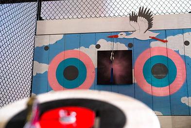 axe throwing gender reveal target with stork.jpg