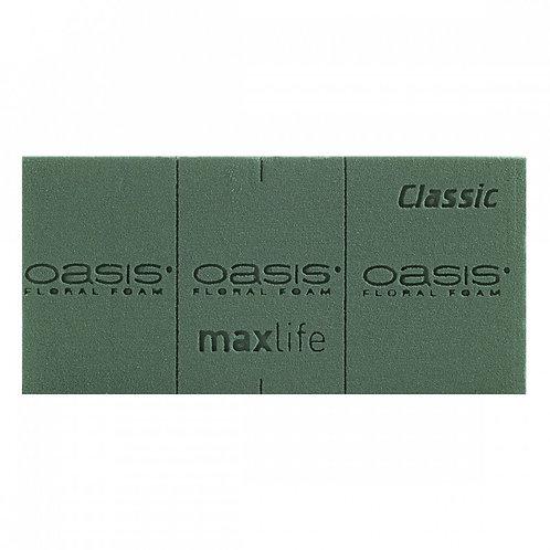 Gąbka mokra Oasis Classic