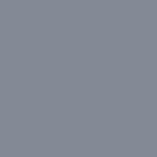 Serious Gray