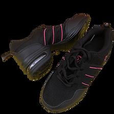 Chaussures de danse.png