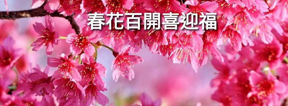 新春賀卡基本款.jpg