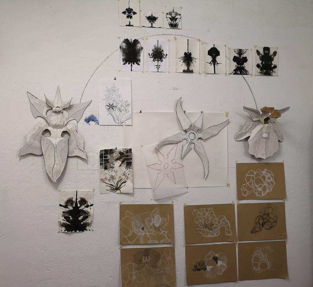 Studien zu Objekten und Orchideen