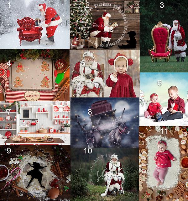 Christmas minis 20 scenes numbered.jpg