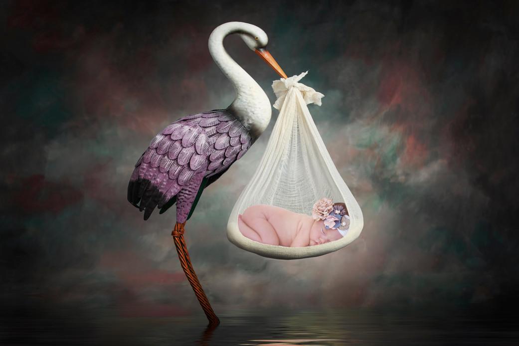 helsabeck stork.jpg