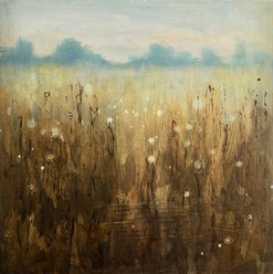 Field of Gold - 28.5 x 28.5 cms ink on w