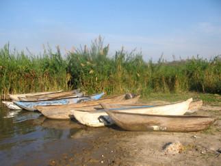 60_(A)_Canoes.jpg