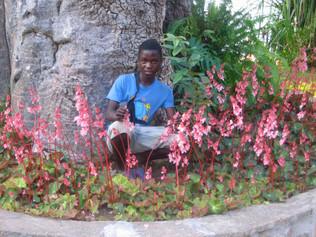 99_(P)_Andrew Among the Flowers.jpg