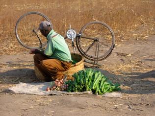 78_(P)_Man with Bike.jpg