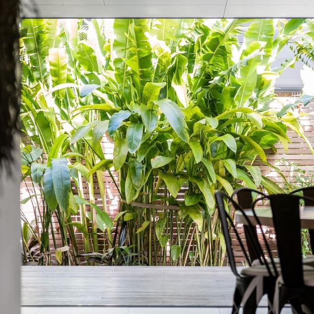 Maison De Belongil gardens