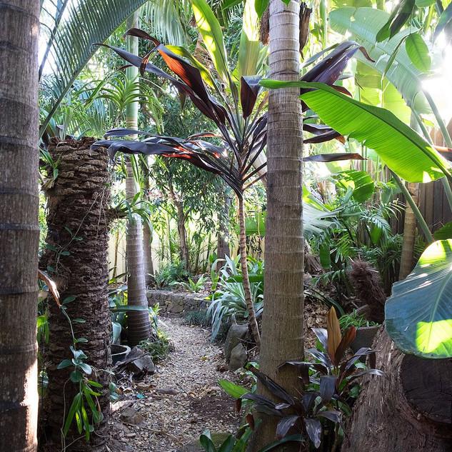 Boonara at Byron gardens
