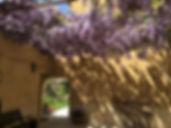 patio glycine4 copie.jpg