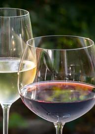 vin2 copie.jpg