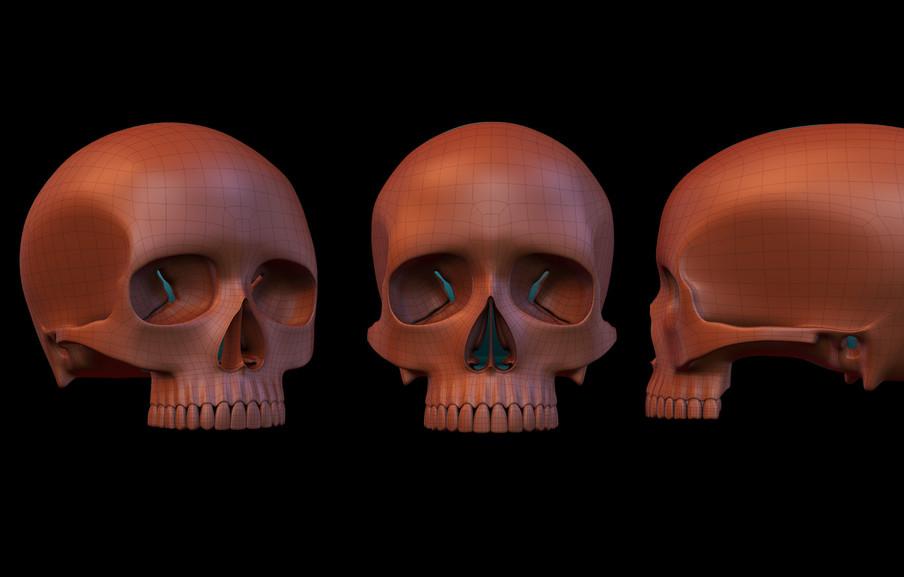 skull10.jpg