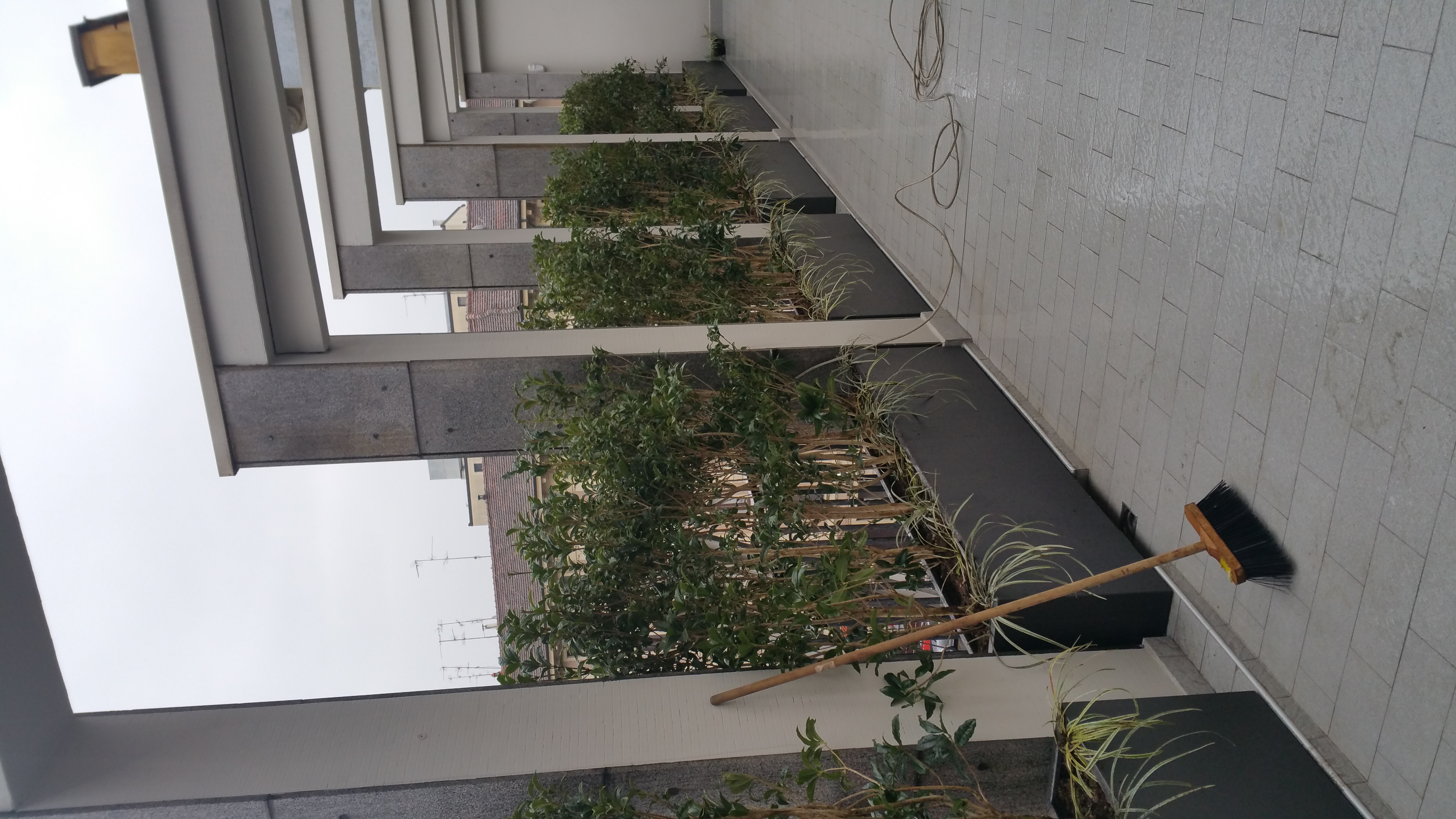 terrazzo pta Venezia