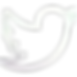 Gradient Twitter.png
