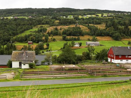 Norsk Fjordhestgard og Covid19