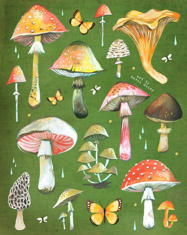 mushroomchart.jpg