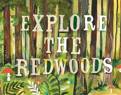 redwoods.jpg
