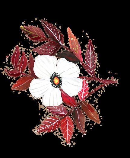 whiterose.png