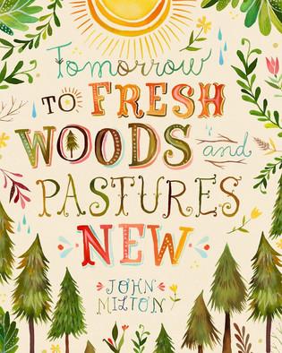 freshwoods.jpg