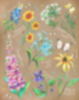 wildflowersonkraft.jpg